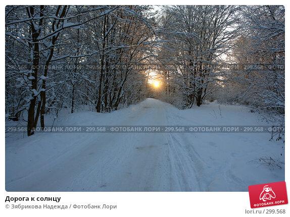 Купить «Дорога к солнцу», фото № 299568, снято 18 ноября 2007 г. (c) Зябрикова Надежда / Фотобанк Лори