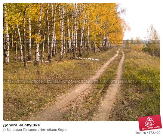 Дорога на опушке, фото № 172420, снято 20 октября 2007 г. (c) Вячеслав Потапов / Фотобанк Лори