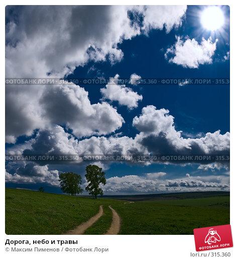 Дорога, небо и травы, фото № 315360, снято 15 мая 2008 г. (c) Максим Пименов / Фотобанк Лори