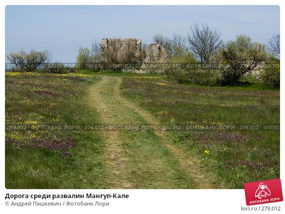 Дорога среди развалин Мангуп-Кале, фото № 279012, снято 5 мая 2007 г. (c) Андрей Пашкевич / Фотобанк Лори