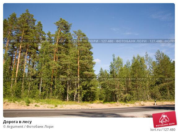 Дорога в лесу, фото № 127480, снято 8 июля 2007 г. (c) Argument / Фотобанк Лори
