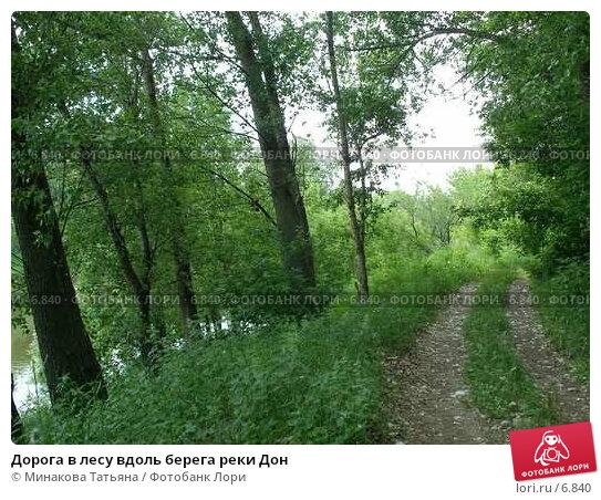 Дорога в лесу вдоль берега реки Дон, фото № 6840, снято 22 октября 2016 г. (c) Минакова Татьяна / Фотобанк Лори