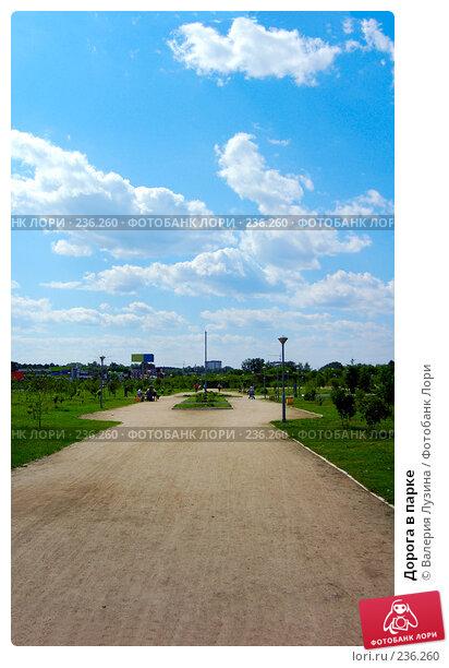 Дорога в парке, фото № 236260, снято 29 июня 2007 г. (c) Валерия Потапова / Фотобанк Лори