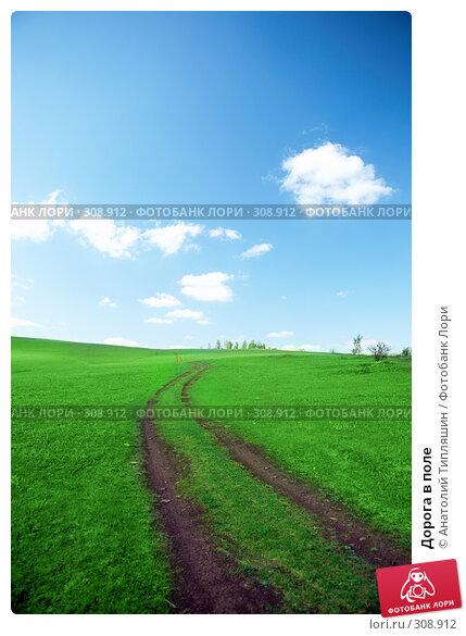 Дорога в поле, фото № 308912, снято 22 мая 2008 г. (c) Анатолий Типляшин / Фотобанк Лори