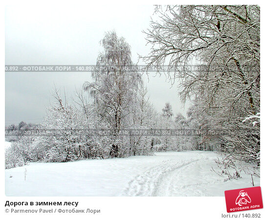 Дорога в зимнем лесу, фото № 140892, снято 15 февраля 2007 г. (c) Parmenov Pavel / Фотобанк Лори