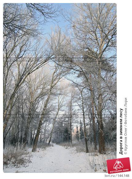 Дорога в зимнем лесу, фото № 144148, снято 5 декабря 2007 г. (c) Круглов Олег / Фотобанк Лори