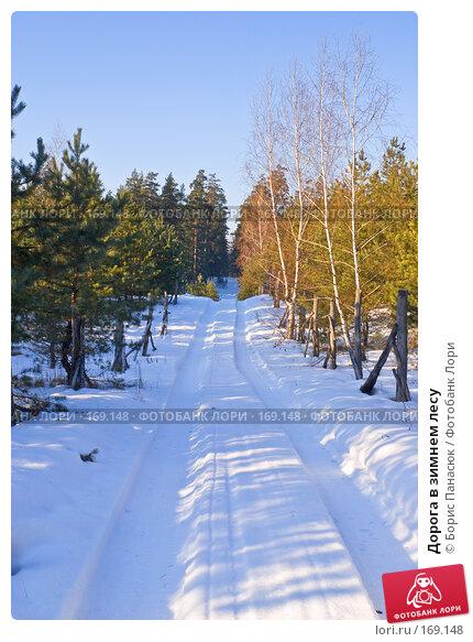 Купить «Дорога в зимнем лесу», фото № 169148, снято 31 декабря 2007 г. (c) Борис Панасюк / Фотобанк Лори