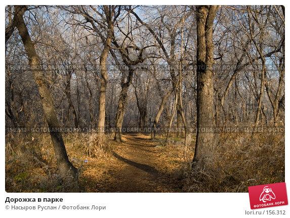 Дорожка в парке, фото № 156312, снято 2 ноября 2007 г. (c) Насыров Руслан / Фотобанк Лори