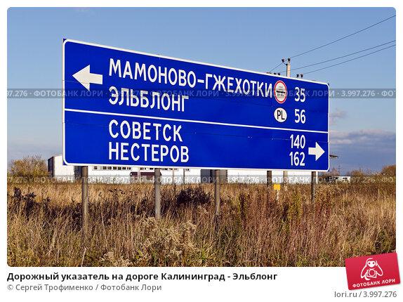 Купить «Дорожный указатель на дороге Калининград - Эльблонг», фото № 3997276, снято 4 ноября 2012 г. (c) Сергей Трофименко / Фотобанк Лори