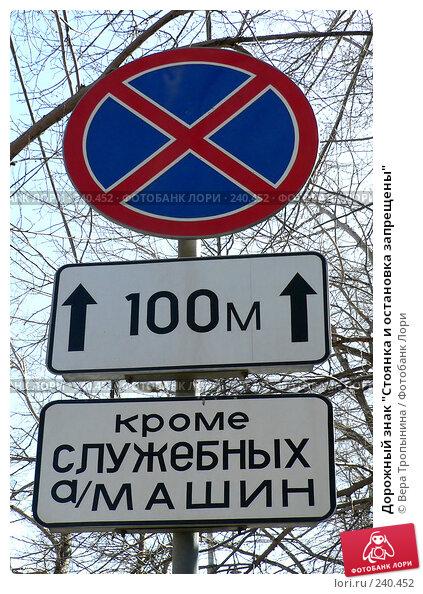 """Дорожный знак """"Стоянка и остановка запрещены"""", фото № 240452, снято 27 октября 2016 г. (c) Вера Тропынина / Фотобанк Лори"""