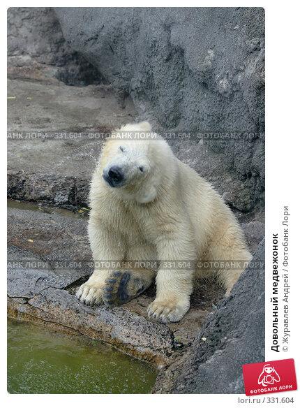 Довольный медвежонок, эксклюзивное фото № 331604, снято 18 июня 2008 г. (c) Журавлев Андрей / Фотобанк Лори