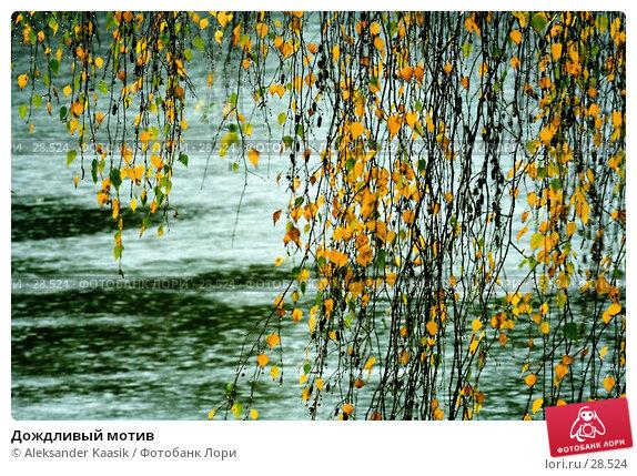 Купить «Дождливый мотив», фото № 28524, снято 24 ноября 2017 г. (c) Aleksander Kaasik / Фотобанк Лори