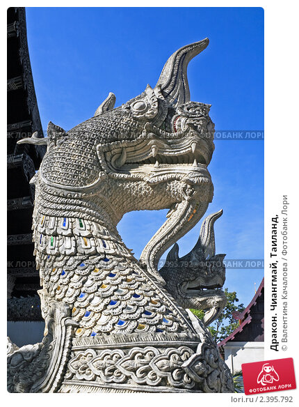 Купить «Дракон. Чиангмай, Таиланд,», эксклюзивное фото № 2395792, снято 27 декабря 2009 г. (c) Валентина Качалова / Фотобанк Лори