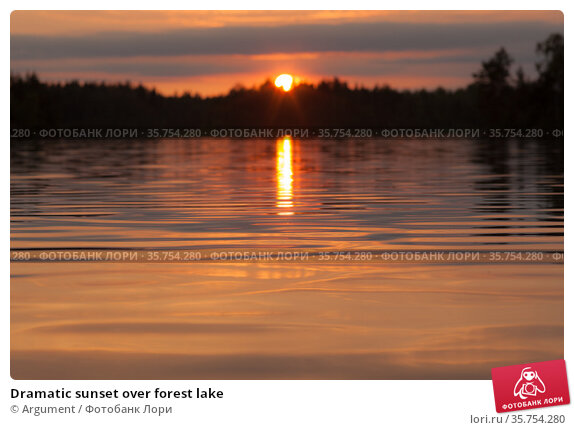Dramatic sunset over forest lake. Стоковое фото, фотограф Argument / Фотобанк Лори