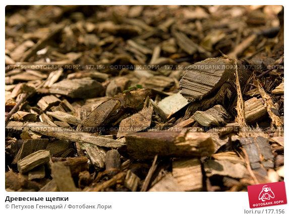 Древесные щепки, фото № 177156, снято 8 июля 2007 г. (c) Петухов Геннадий / Фотобанк Лори