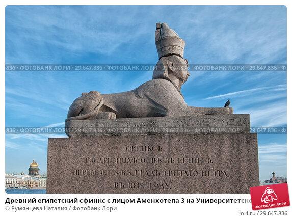 Купить «Древний египетский сфинкс с лицом Аменхотепа 3 на Университетской набережной рядом с Академией художеств. Санкт-Петербург», фото № 29647836, снято 27 августа 2018 г. (c) Румянцева Наталия / Фотобанк Лори