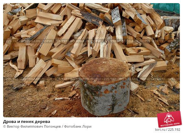 Купить «Дрова и пенек дерева», фото № 225192, снято 13 марта 2008 г. (c) Виктор Филиппович Погонцев / Фотобанк Лори