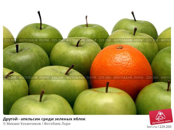 Другой - апельсин среди зеленых яблок, фото № 229200, снято 16 марта 2008 г. (c) Михаил Коханчиков / Фотобанк Лори