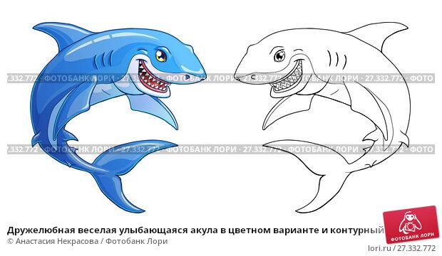 Купить «Дружелюбная веселая улыбающаяся акула в цветном варианте и контурный рисунок. Иллюстрация морского животного в мультипликационном стиле, изолированно на белом, страница для раскраски», иллюстрация № 27332772 (c) Анастасия Некрасова / Фотобанк Лори