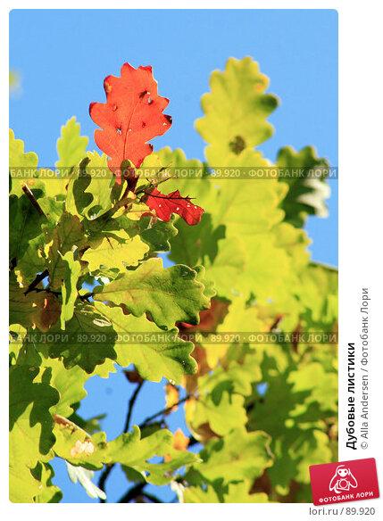 Дубовые листики, фото № 89920, снято 24 сентября 2007 г. (c) Alla Andersen / Фотобанк Лори