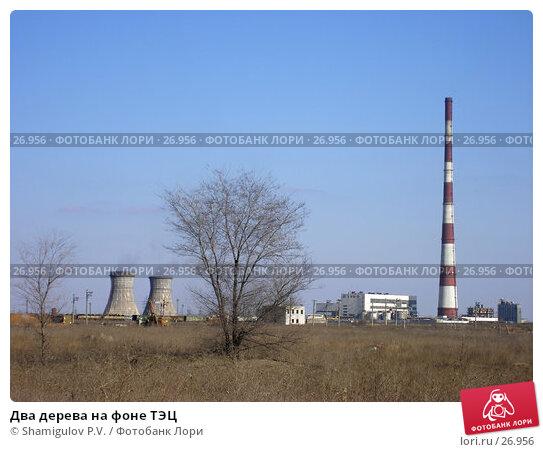 Два дерева на фоне ТЭЦ, фото № 26956, снято 24 марта 2007 г. (c) Shamigulov P.V. / Фотобанк Лори