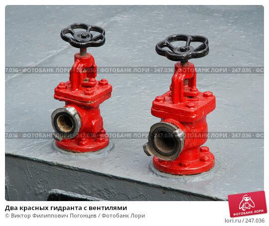 Два красных гидранта с вентилями, фото № 247036, снято 14 июля 2004 г. (c) Виктор Филиппович Погонцев / Фотобанк Лори