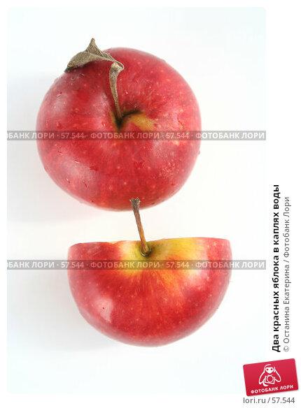 Два красных яблока в каплях воды, фото № 57544, снято 7 мая 2007 г. (c) Останина Екатерина / Фотобанк Лори