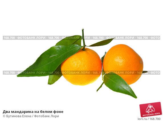 Два мандарина на белом фоне, фото № 168700, снято 27 декабря 2007 г. (c) Бутинова Елена / Фотобанк Лори