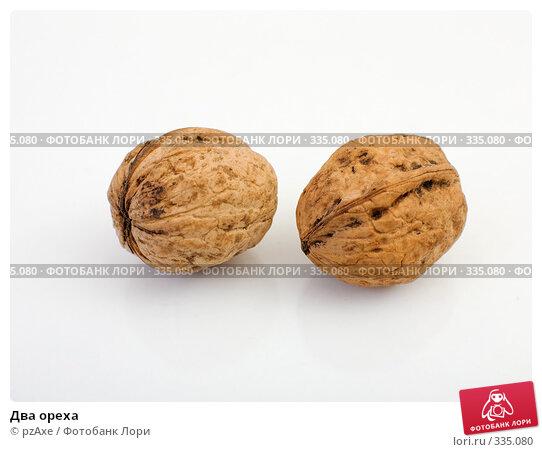 Два ореха, фото № 335080, снято 22 июня 2008 г. (c) pzAxe / Фотобанк Лори