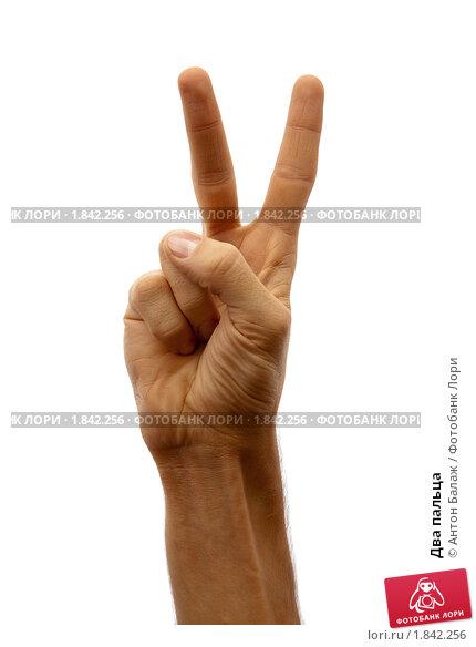 Фото два пальца 15 фотография