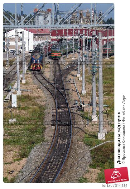 Два поезда на ж/д путях, фото № 314184, снято 15 августа 2007 г. (c) Ярослава Синицына / Фотобанк Лори