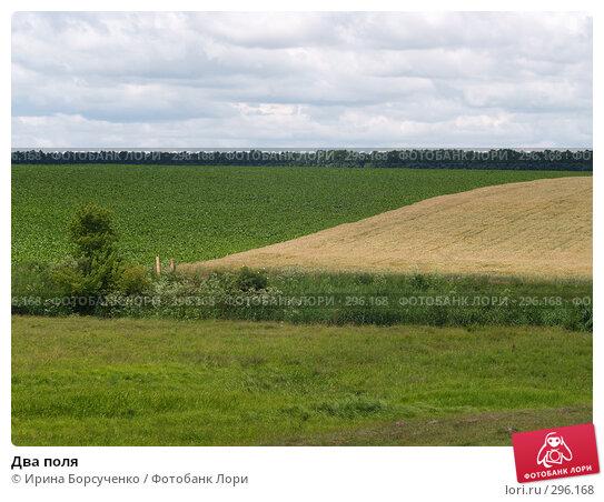Два поля, фото № 296168, снято 20 июня 2007 г. (c) Ирина Борсученко / Фотобанк Лори