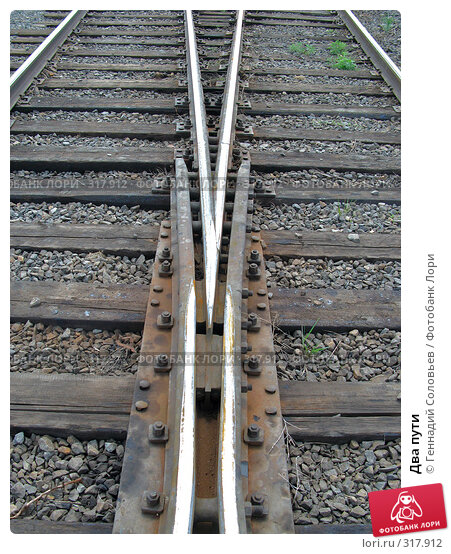 Два пути, фото № 317912, снято 5 июня 2008 г. (c) Геннадий Соловьев / Фотобанк Лори