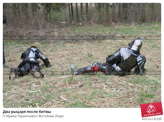 Два рыцаря после битвы, эксклюзивное фото № 4232, снято 8 мая 2006 г. (c) Ирина Терентьева / Фотобанк Лори