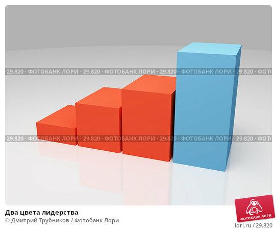 Купить «Два цвета лидерства», иллюстрация № 29820 (c) Дмитрий Трубников / Фотобанк Лори