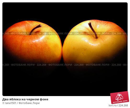 Два яблока на черном фоне, эксклюзивное фото № 224268, снято 15 февраля 2008 г. (c) lana1501 / Фотобанк Лори