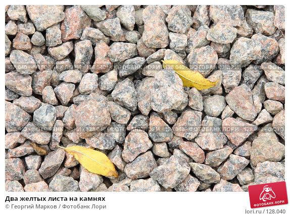 Два желтых листа на камнях, фото № 128040, снято 27 сентября 2006 г. (c) Георгий Марков / Фотобанк Лори