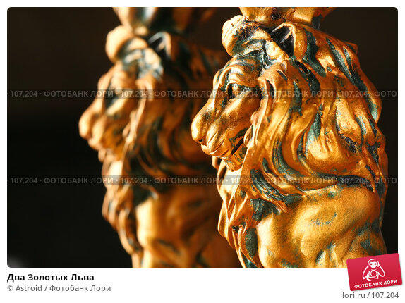 Два Золотых Льва, фото № 107204, снято 5 октября 2007 г. (c) Astroid / Фотобанк Лори