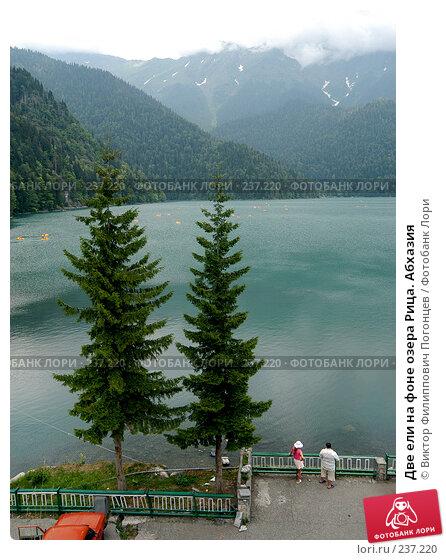 Две ели на фоне озера Рица. Абхазия, фото № 237220, снято 25 июля 2005 г. (c) Виктор Филиппович Погонцев / Фотобанк Лори