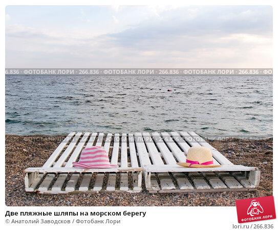 Две пляжные шляпы на морском берегу, фото № 266836, снято 14 сентября 2006 г. (c) Анатолий Заводсков / Фотобанк Лори