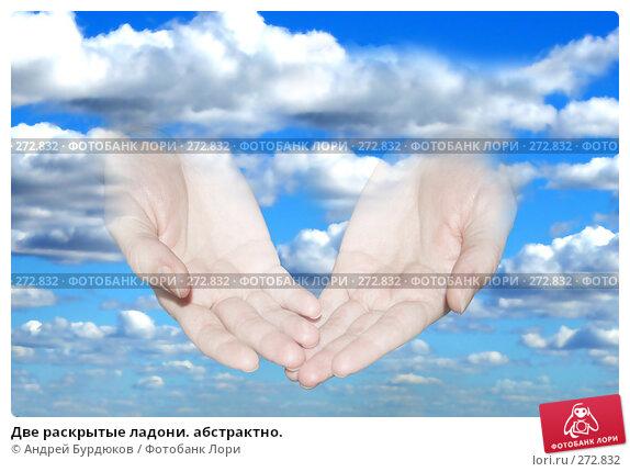Две раскрытые ладони. абстрактно., фото № 272832, снято 16 сентября 2006 г. (c) Андрей Бурдюков / Фотобанк Лори
