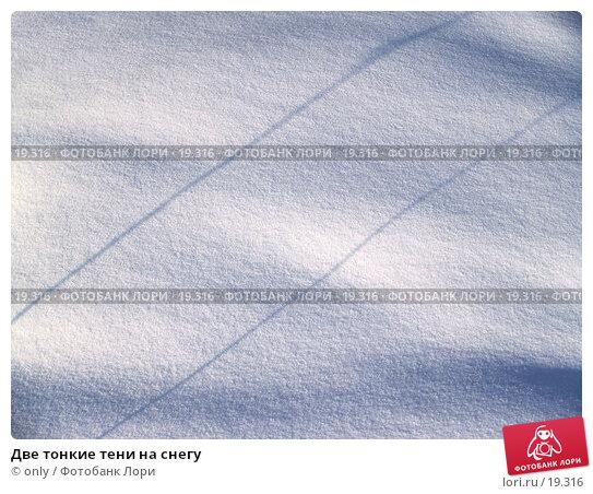Две тонкие тени на снегу, фото № 19316, снято 20 марта 2006 г. (c) only / Фотобанк Лори