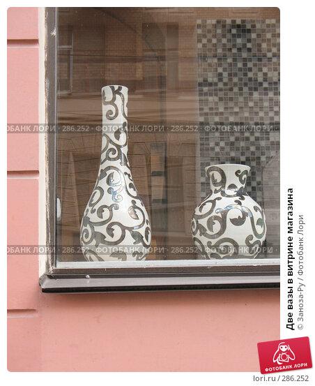 Две вазы в витрине магазина, фото № 286252, снято 11 мая 2008 г. (c) Заноза-Ру / Фотобанк Лори