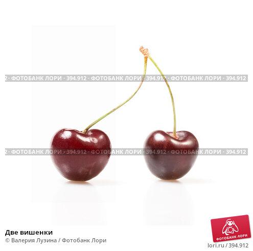 Купить «Две вишенки», фото № 394912, снято 18 июня 2008 г. (c) Валерия Потапова / Фотобанк Лори