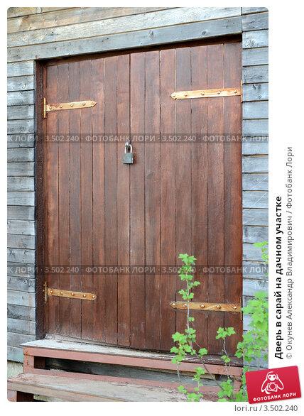 простая стальная дверь в хозблок