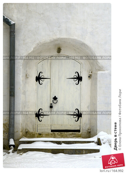 Дверь в стене, фото № 164992, снято 23 октября 2016 г. (c) Елена Прокопова / Фотобанк Лори