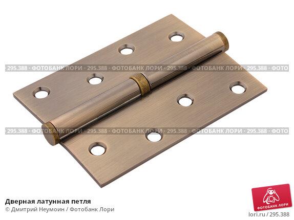 Купить «Дверная латунная петля», эксклюзивное фото № 295388, снято 15 апреля 2008 г. (c) Дмитрий Неумоин / Фотобанк Лори