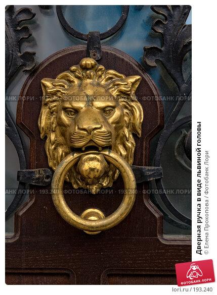 Дверная ручка в виде львиной головы, фото № 193240, снято 12 мая 2005 г. (c) Елена Прокопова / Фотобанк Лори