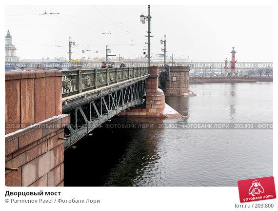 Дворцовый мост, фото № 203800, снято 6 февраля 2008 г. (c) Parmenov Pavel / Фотобанк Лори