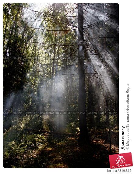 Купить «Дым в лесу», фото № 319312, снято 8 июня 2008 г. (c) Морозова Татьяна / Фотобанк Лори
